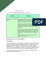 Plan Desarrollo Definitivo Area Surubi v6 FINAL