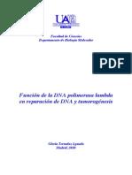 FAMILIAS DE POLIMERASAS ADN