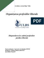 REFERAT - Raspunderea in Cadrul Profesiilor Juridice Liberale