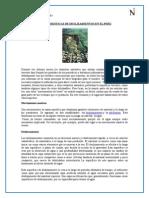 Caracteristicas de Deslizamientos en El Peru Aldo