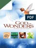 God of Wonders - Steen, David A