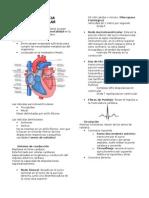Notas Cardio.docx