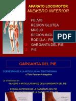 10-tobillo-pie-100406220746-phpapp02