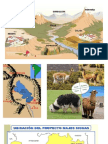 Relieve Andino Geografia
