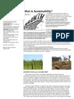 Hemp and Sustainability - HEMPETHICS