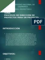 PROCESOS DE DIRECCIÓN DE PROYECTOS PARA UN PROYECTO.pptx