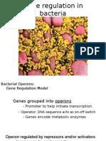 Biology AP - Gene Regulation in Bacteria
