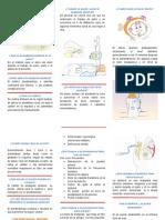 FOLLETO ANALGESIA EPIDURAL por enfermeria