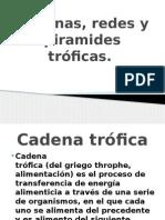 Cadenas, Redes y Piramides Tróficas