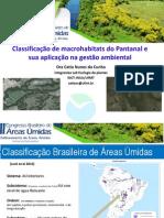 classificação macrohabitats pantanal.pdf