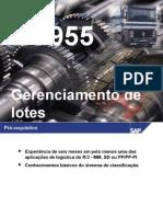 LO955 - Gerenciamento de Lotes