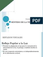 sentidodelavista-091219002314-phpapp02