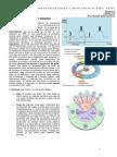 Lectura 5-Division Celular y Meiosis