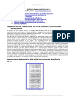 Auditoria Comun Estados Financieros
