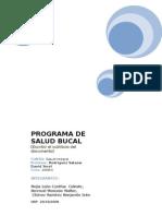 Monografia Programa de Salud Bucal
