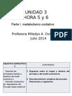 HORA 5 y 6 U3 Julio 2014-Oxidacion Piruvato