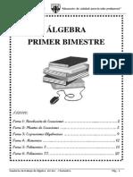 1ro SECUNDARIA  Ã-LGEBRA.pdf