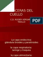 Visceras Del Cuello