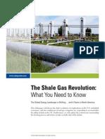 The Shale Gas Revolution