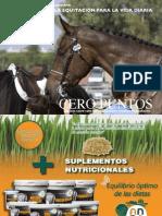 La Equitación Como Desarrollo Personal