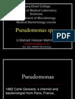 pseudomonasmahadippt-130213125429-phpapp02