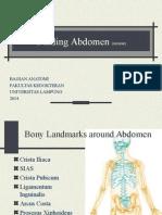 Dinding Abdomen Review 2014