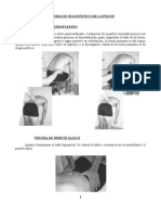 Osteopatia Practica Pelvis