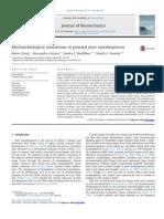 Mechanobiological Simulations of Prenatal Joint Morphogenesis 2014 Journal of Biomechanics