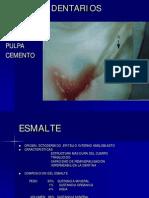 TEJIDOS DENTARIOS.pdf