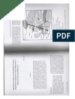 Cochet_2001[1].pdf