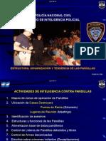 ESTRUCTURA, ORGANIZACIÓN Y TENDENCIA DE LAS PANDILLAS