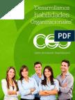 Portafolio_CEO.pdf