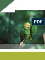 6 Capitulo Politica Gestion Biodiversidad
