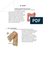 A qué se refiere el término autointoxicación del colón.doc