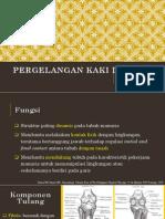 Anatomi Dan Kinesiologi Pergelangan Kaki Dan Kaki (1)