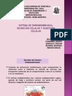 SISTEMA DE ENDOMEMBRANA.ppt