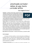 Reconceitualização curricular - Pacheco