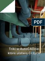 Triki AutoCAD