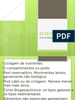ECOLOGIA Ciclos Biogeoquimicos Aula VI