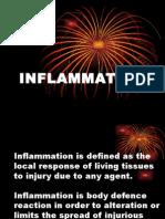 Exudativeinflammation