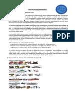 Papercraft Resumen