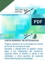 La Junta Universal en la LGS