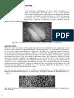 CAPÍTULO 21 - Anortositas