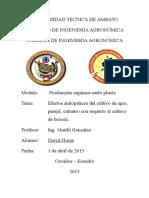 Efectos Alelopáticos Del Cultivo de Apio, Perejil, Culantro Con Respecto Al Cultivo de Brócoli.