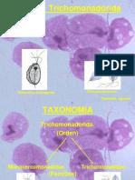 Trichomonas Spp JUNIO 2015