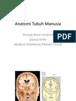 Anatomi Tubuh Manusia.pdf