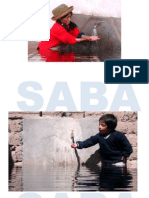 3.-SABA - Phillipe Zahner,CEsarina Quintana 180811