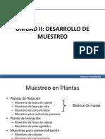 Unidad II, Muestreo clase 04 de Mayo.pdf