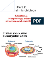 2-2 procaryotes cell.pptx
