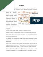 identificación de las bases biológicas del comportamiento humano